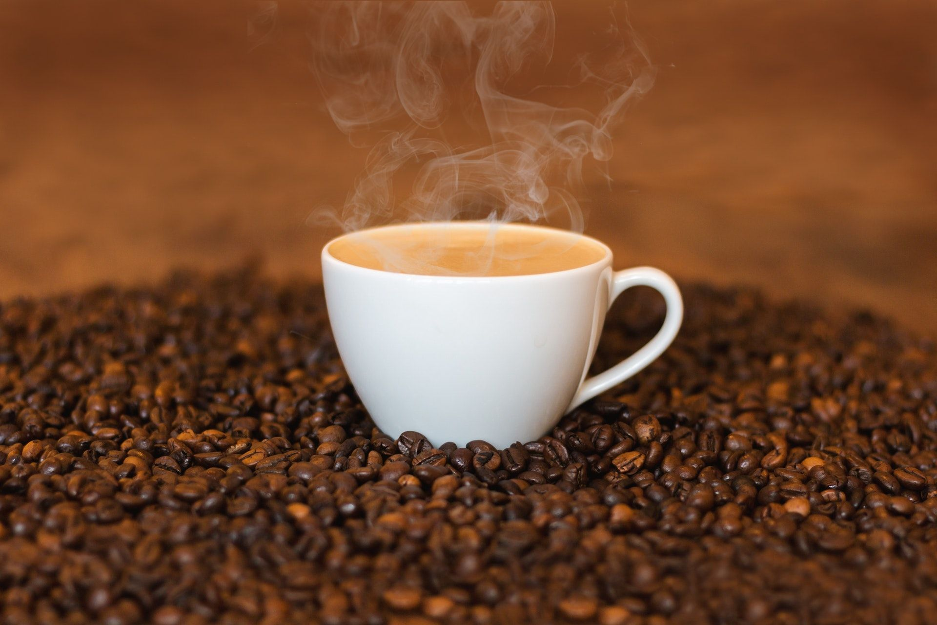 Hot Cappuccino On Coffee Seeds