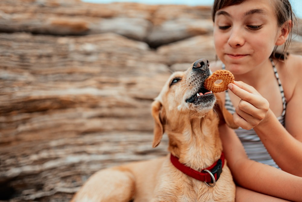 girl sharing a cookie with her dog